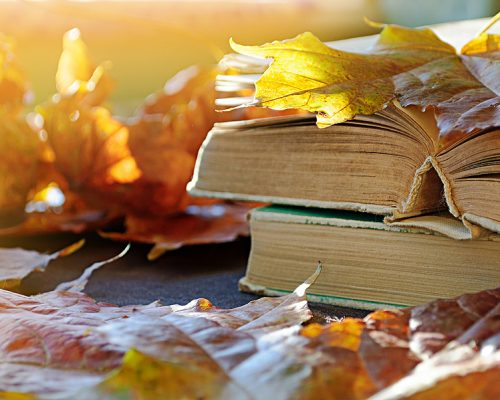 Fall background, Back to school concept. Stack of old books on the table among the dry yellow maple leaves and bright sunlight. Back to school composition, back to school design. Shallow DOF.